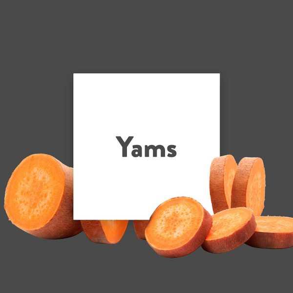 Pflanze-des-Monats-Yams